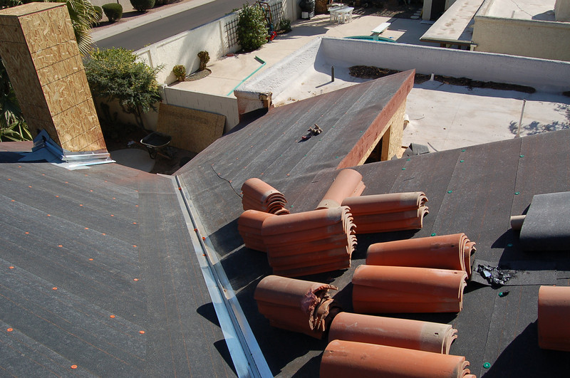 Our roof; Daniel and Joyce's yard.