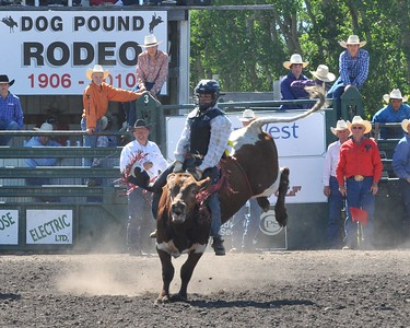 Boys Steer Riding (Section 3)