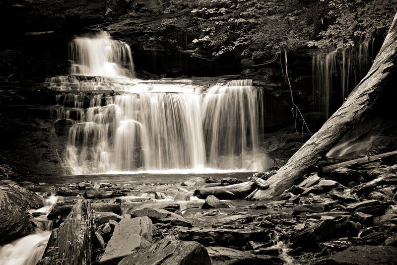 Ricketts Glen Camping Trip 49.jpg