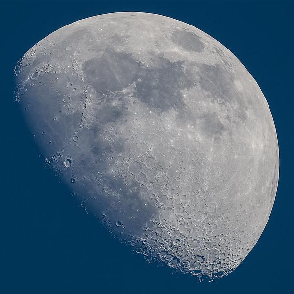 Moon Day  Sharpened-3.jpg
