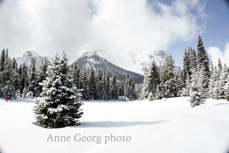 winterownderland-1.jpg