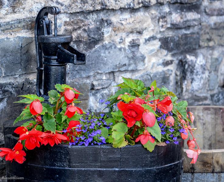 Flowers & pump-1.jpg