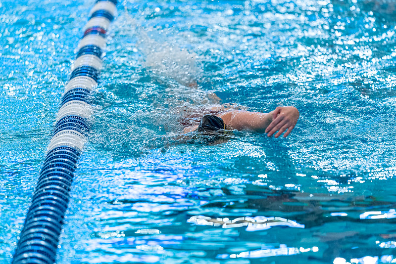 KO_swim_dive-00031.jpg