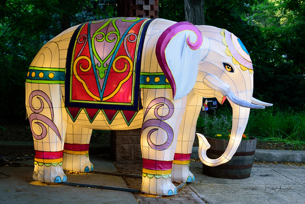 Roger Williams Park Zoo - Asian Lantern Festival
