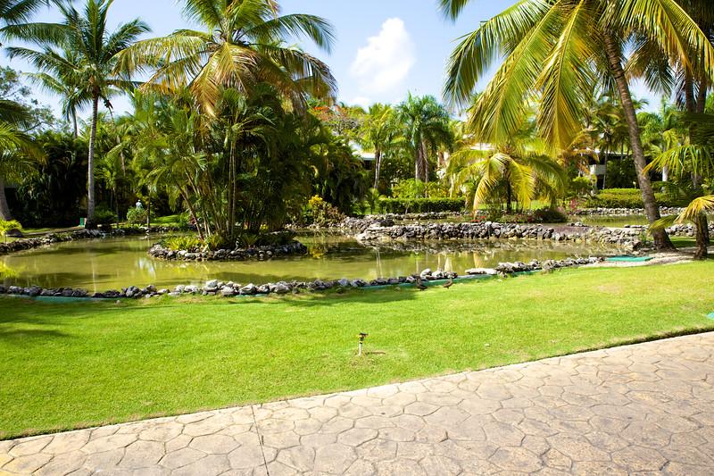 Punta Cana  2014-06-12 041.jpg