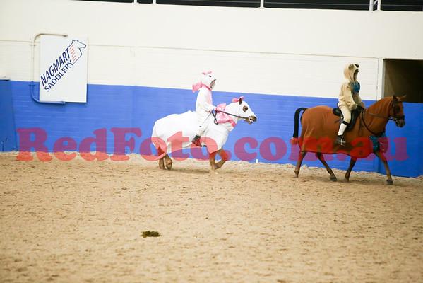 2014 08 23 PCAWA State Dressage Champs Musical Ride 6 Darlington Aristocats