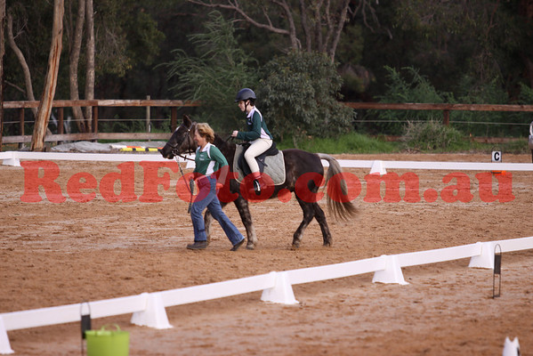 2011 02 06 Darlington Pony Club Dressage Day Ripplebrook