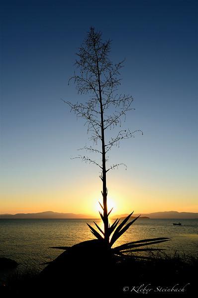 Sambaqui (Florianópolis - South Brazil) at sunset