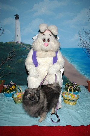 Easter Bunny 2007