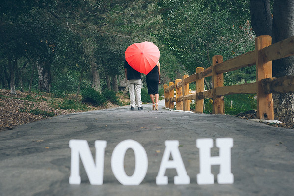 Waiting For Noah