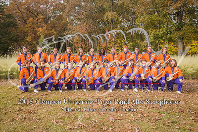 2018 Tiger Band Sections - Photos by Christopher Sloan and Tamara Bowen