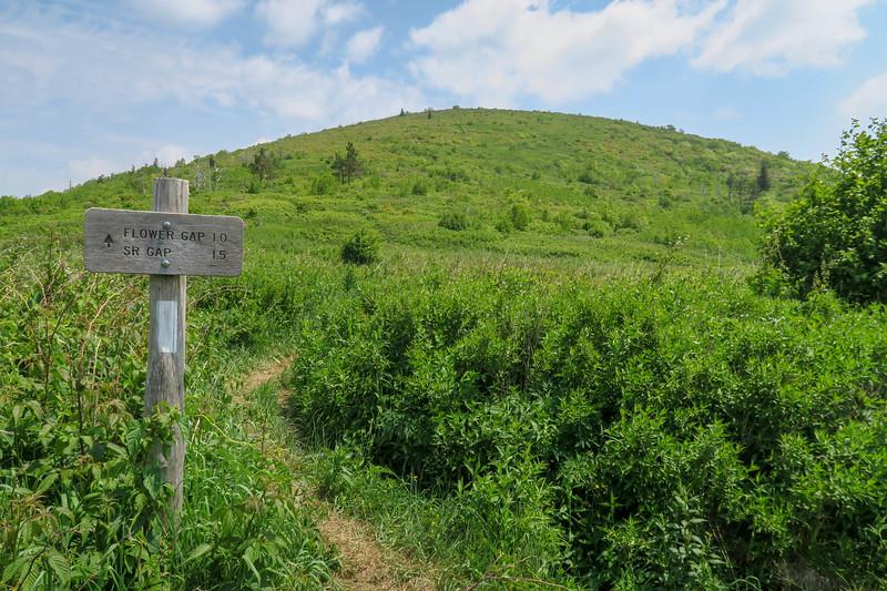 Graveyard Ridge-Art Loeb Trail Junction (Ivestor Gap) -- 5,700'
