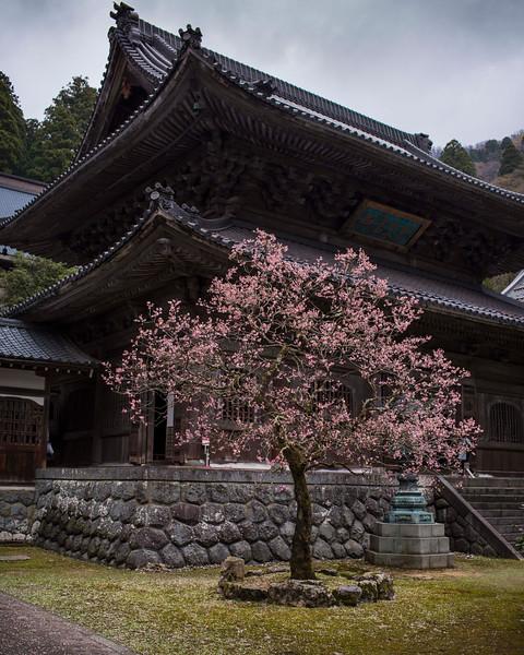 Eiheiji Temple 1004137 .jpg