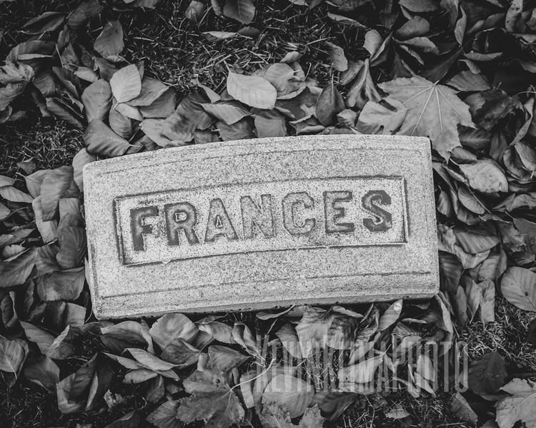 Graceland110218-225.jpg