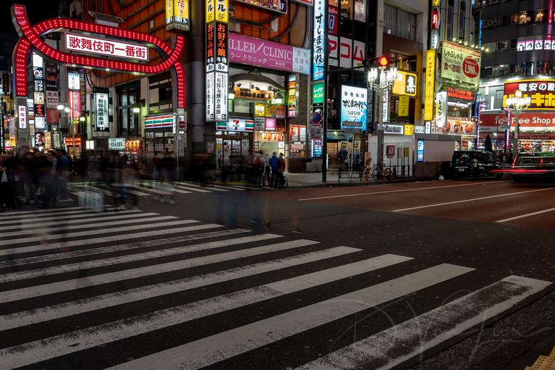 JapanPhotoTour20190204-30.jpg