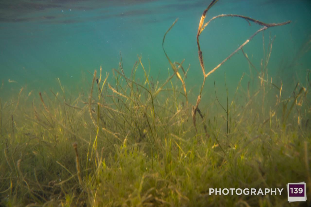 Underwater Test