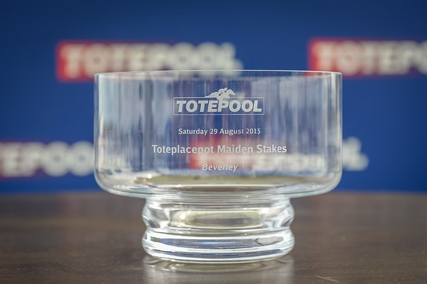 The toteplacepot Maiden Stakes
