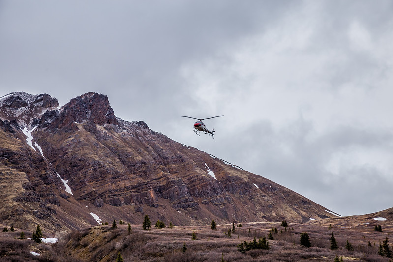Heli Hiking in Denali State Park with Era Helicopters in Alaska