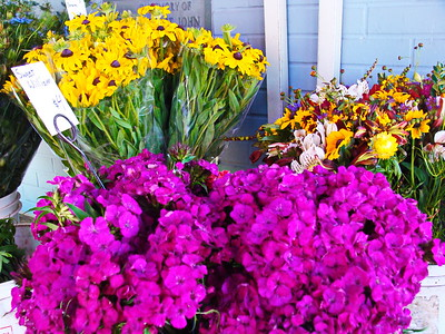 Botanicals: Flower Markets, Hanging Baskets, Bouquets