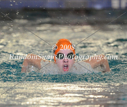 Dulles District Swim Meet -- 01/26/2013