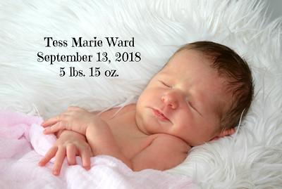 Tess Marie~Newborn
