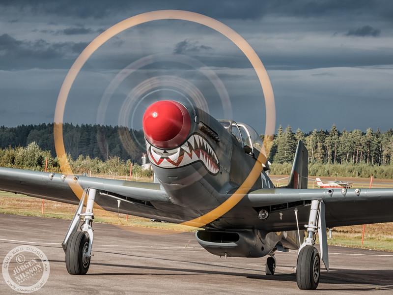 """Mustang P-51D """"The Shark"""""""
