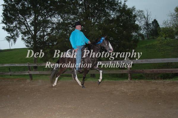 CLASS 7   WALKING  HORSE TRAIL PLEASURE SPECIALTY