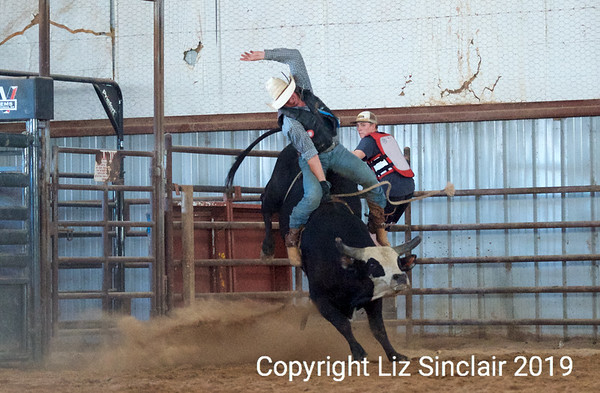 Bull Riding and Fighting Clinic 2