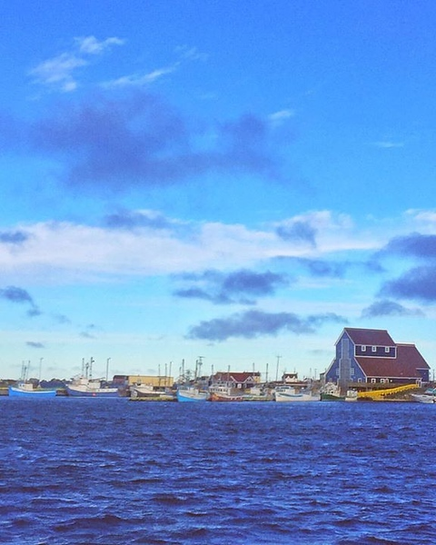 it-may-be-cold-in-toronto-but-its-warm-with-sunny-skies-in-newfoundland-townofbonavista_22281453976_o.jpg
