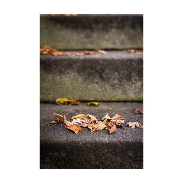 276_Steps_10x10.jpg