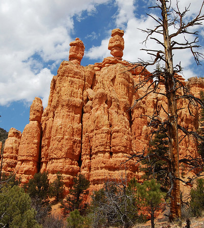 Red Canyon - Dixie NF