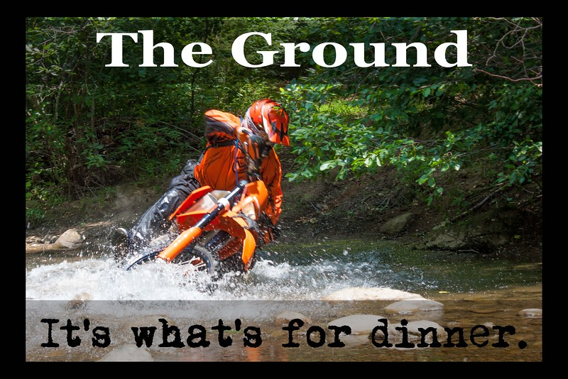The Ground Its whats for dinner.jpg