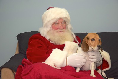 Puppy Pictures with Santa at Happy Tails