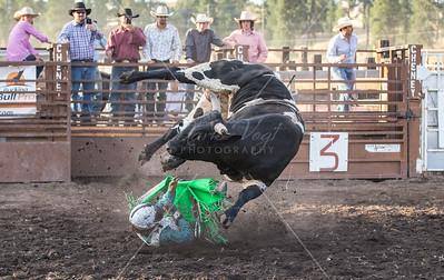 High Desert Bucking Bulls Assoc