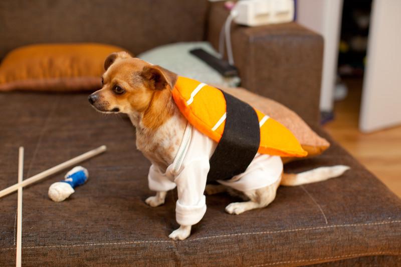 Dog-sushi-halloween-21.jpg