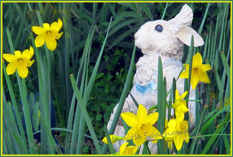 Peter Cottontail in the Garden - Judith Sparhawk