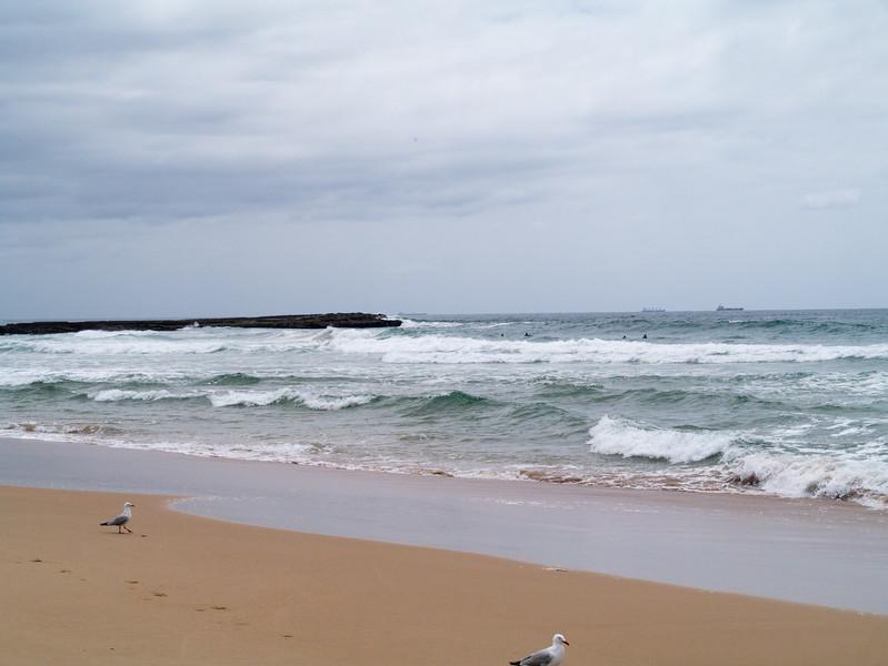 Woonona Beach