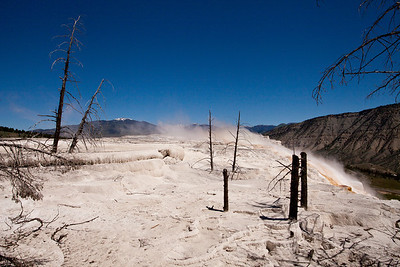 Yellowstone National Park - Landscapes