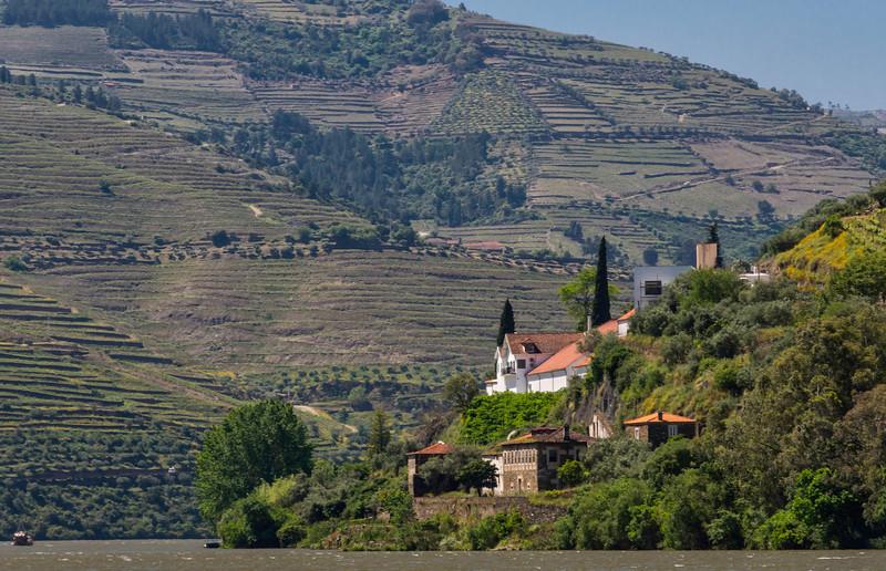 2016 Portugal_DouroValley_Pinhao-2.jpg
