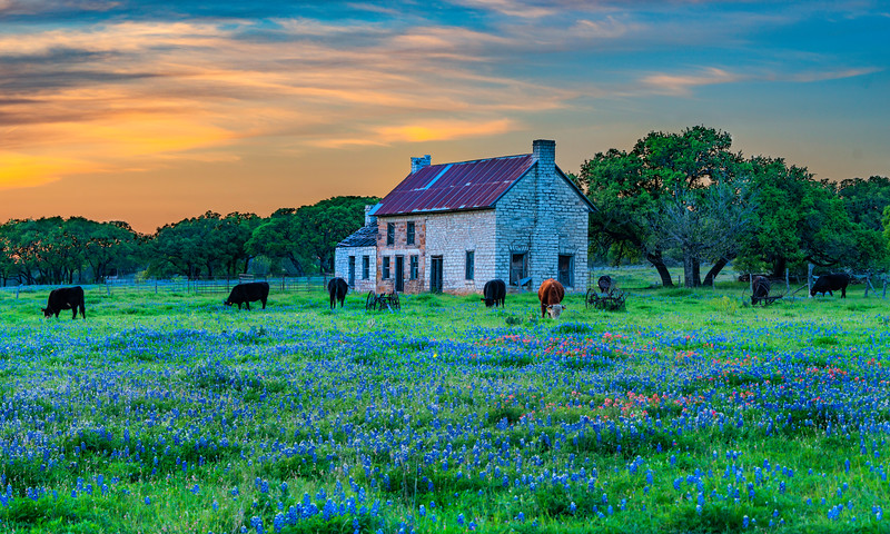 Texas and the Hill Country