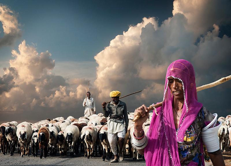 Tending the Goats.jpg