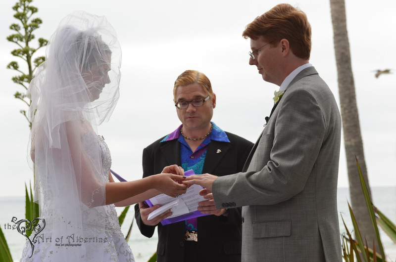 Laura & Sean Wedding-2378.jpg