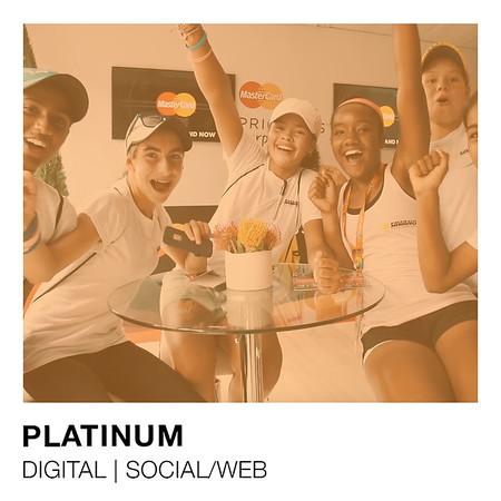MasterCard Platinum Social