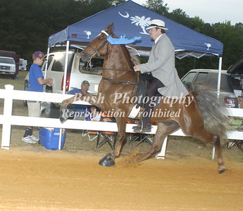 CLASS 26  WALKING PONY AMATEUR SPECIALTY