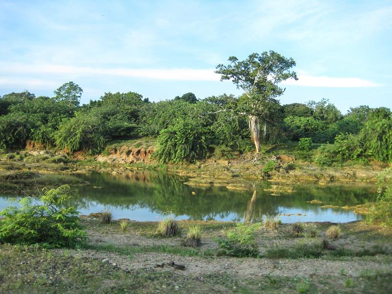 Sri_Lanka17-9542.jpg