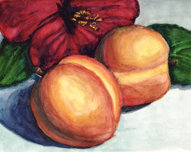 Painted as an assignment from my watercolor class.  It is approximately 8x10 inches.  I don't particularly care for the flower or leaves, but I thought the peaches turned out fairly well.