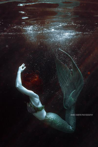 Mermaid_0541WEB.jpg