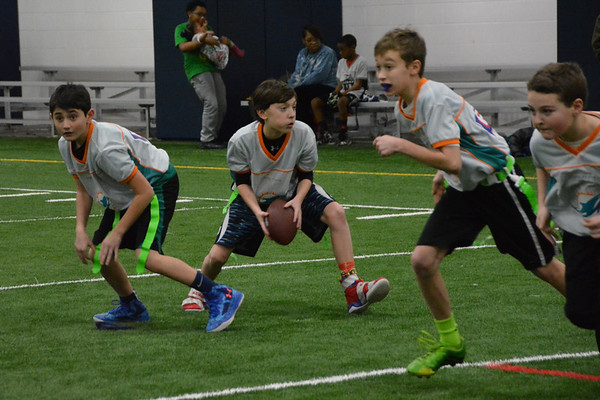 Dolphins Flag Football 1-17