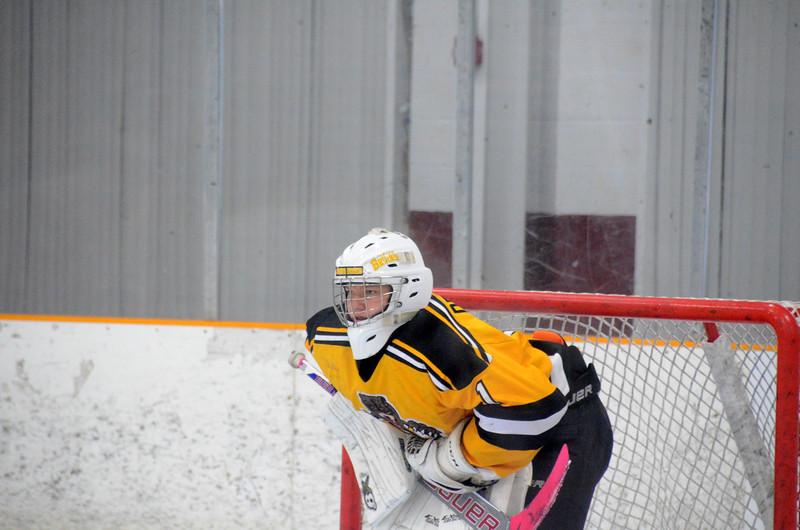 141018 Jr. Bruins vs. Boch Blazers-053.JPG