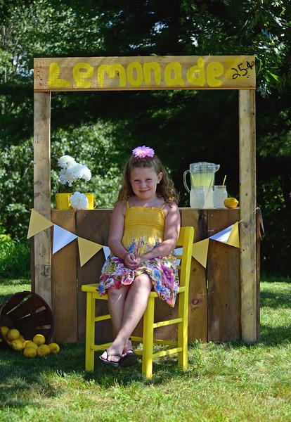 Hayden & Hadley Lemonade Stand
